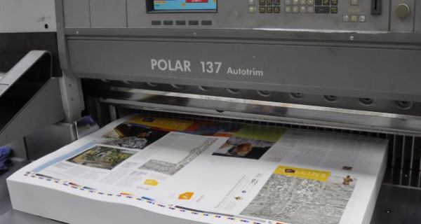 Polar Model 137ED